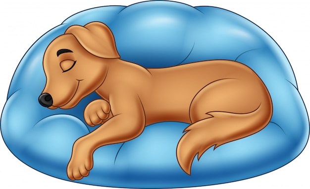 Cartoon sleep dog Vecteur Premium