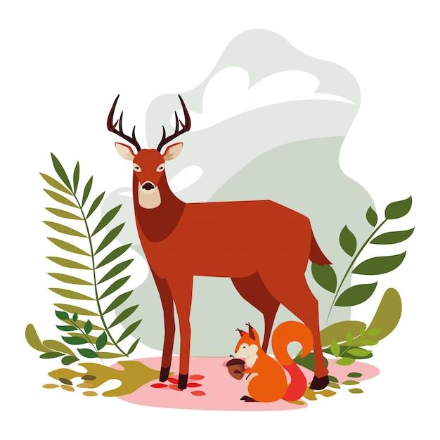 Cerf et écureuil heureux automne Vecteur Premium