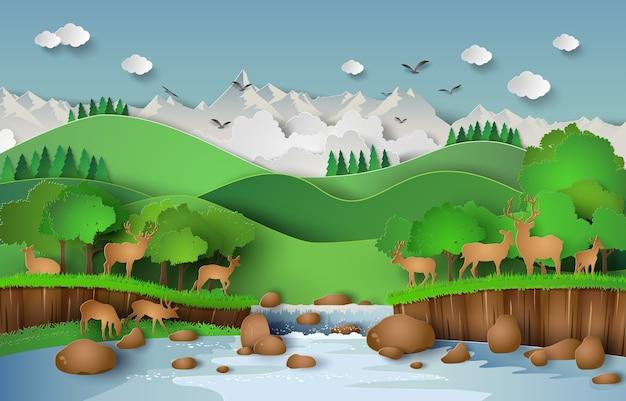 Cerfs dans la forêt Vecteur Premium
