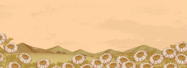 Champ Floral De Camomille Et Montagnes Dans Un Style De Gravure Vecteur Premium