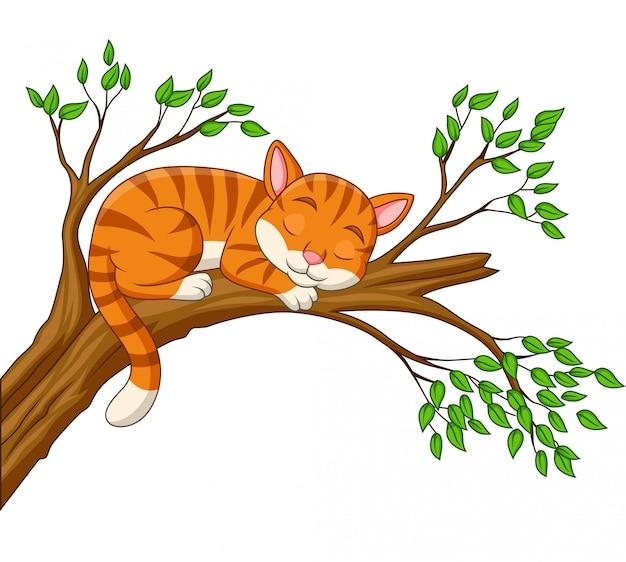 Chat de dessin animé dormant sur la branche Vecteur Premium