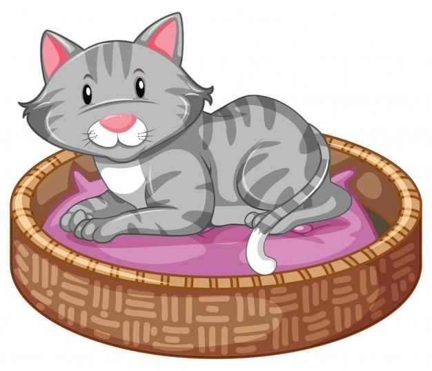 Chat dormant dans le lit Vecteur gratuit