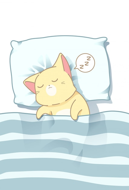 Chat dort sous une couverture. Vecteur Premium