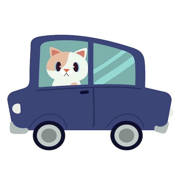 Le chat mignon de caractère conduisant une voiture bleue. le chat conduit une voiture bleue sur le fond blanc. Vecteur Premium