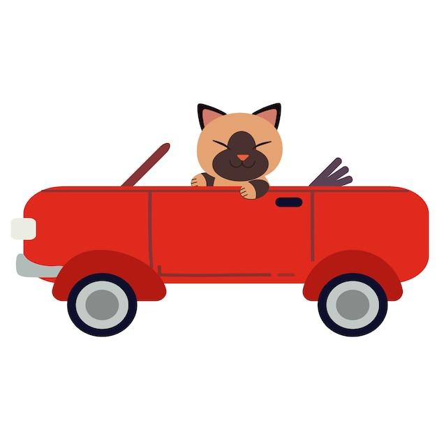Le chat mignon de caractère conduisant une voiture de sport rouge. le chat conduit une voiture rouge sur fond blanc. Vecteur Premium