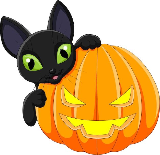 Chat noir de dessin animé avec citrouille d'halloween ...