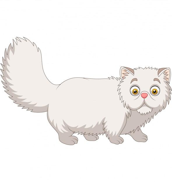 Chat persan de dessin animé sur blanc Vecteur Premium