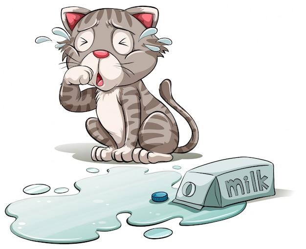 Un chat qui pleure Vecteur Premium