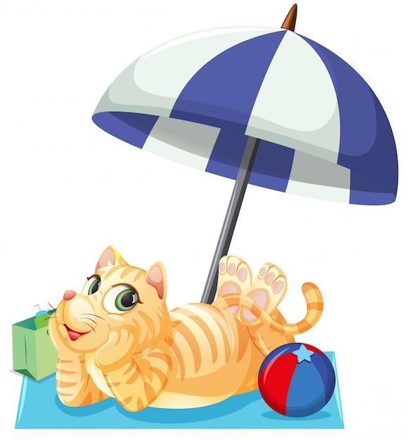Un chat en vacances d'été Vecteur gratuit
