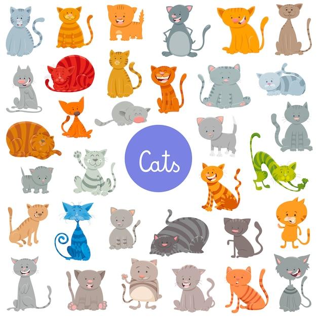 Chats et chatons animaux personnages animaux grand ensemble Vecteur Premium