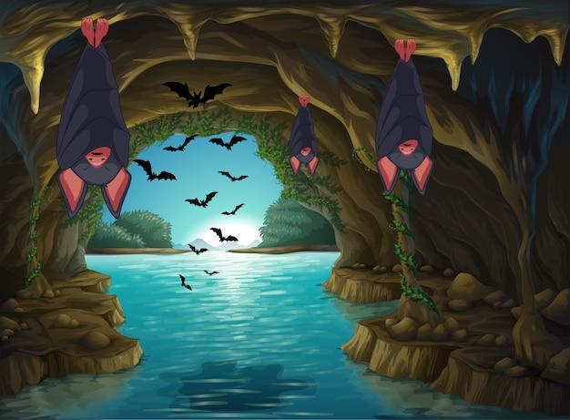 Chauves-souris Vivant Dans La Grotte Sombre Vecteur gratuit