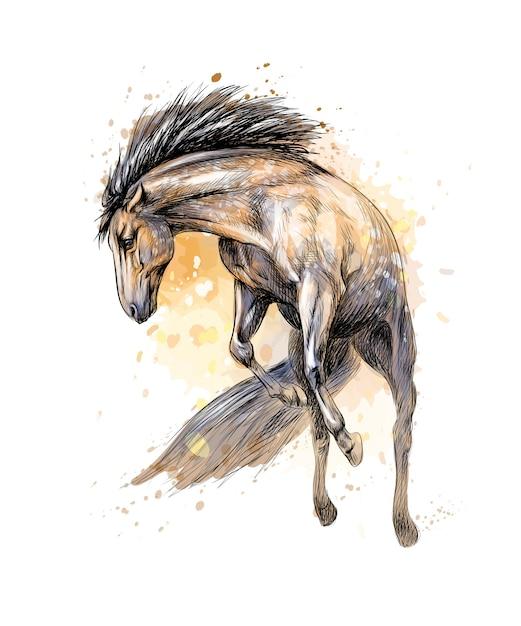 Cheval Courir Au Galop D'éclaboussure D'aquarelles. Croquis Dessiné à La Main. Illustration De Peintures Vecteur Premium