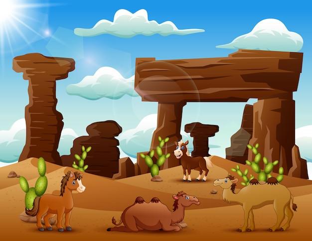 Cheval dessin animé et chameaux profitant du désert Vecteur Premium