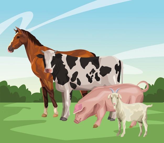 Cheval vache cochon et chèvre Vecteur Premium