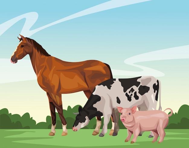 Cheval vache et cochon Vecteur Premium
