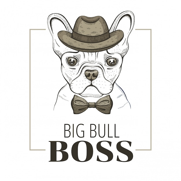 Chien Boss Bulldog Français. Conception De Hipster. Vecteur Animal Cool, Style Dessiné à La Main Doodle. Vecteur Premium