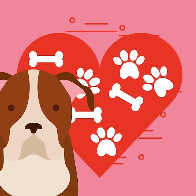 Chien Mignon Assis Avec Patte Et Os Coeur Amour Chien Animal