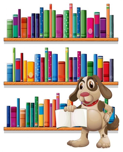 Un chien tenant un livre devant les étagères Vecteur gratuit