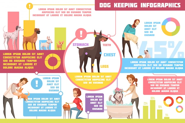 Chiens de compagnie s'alimentant dans la formation conseils pratiques de vétérinaire avec illustration vectorielle abstraite de dessin animé rétro infographie affiche Vecteur gratuit