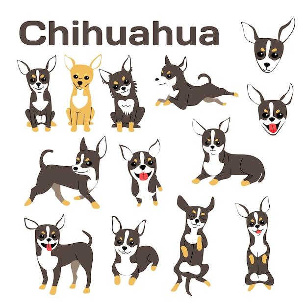 Chihuahua illustration, pose de chien, race de chien Vecteur Premium