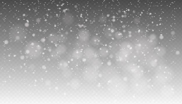 Chutes De Neige, Neige Qui Tombe Réaliste Sans Soudure, Flocons De Neige De Différentes Formes Et Formes, Temps D'hiver. Vecteur Premium