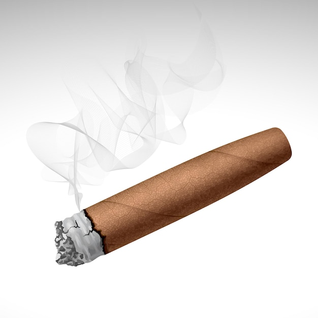Cigare De Fumer Réaliste Isolé Sur Fond Blanc Vecteur Premium