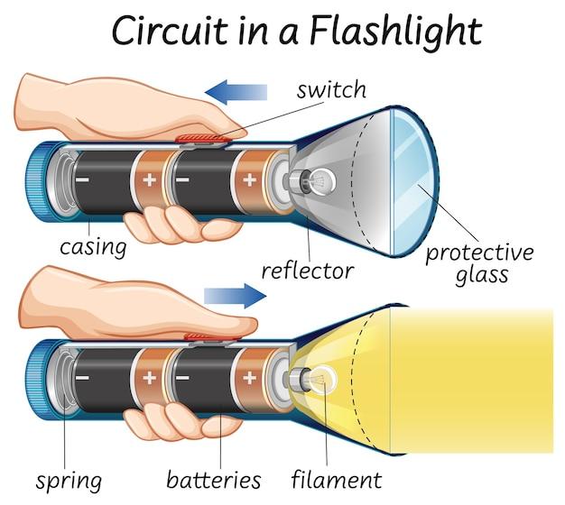 Circuit Dans Une Lampe De Poche Vecteur gratuit