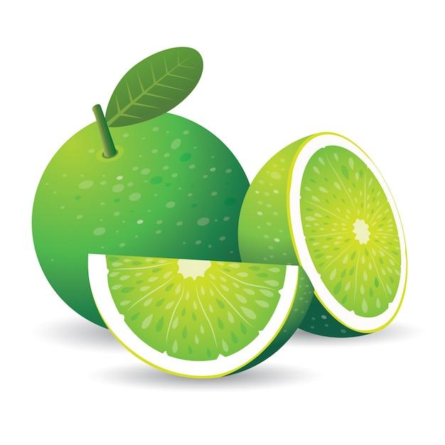 Citron vert Vecteur Premium