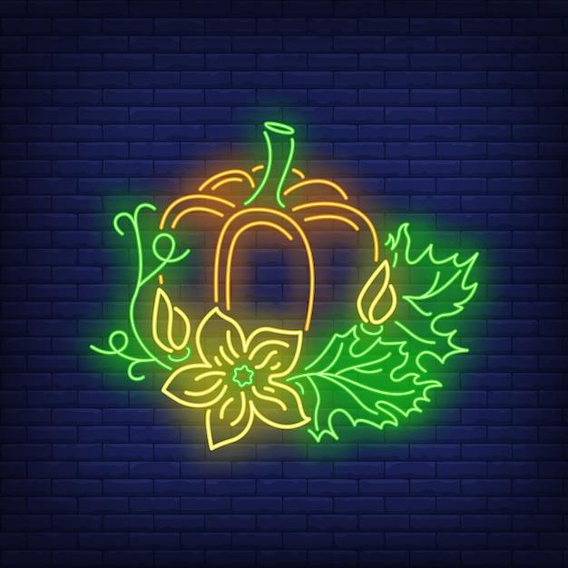 Citrouille à feuilles néon Vecteur gratuit