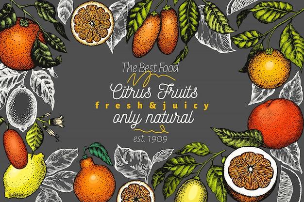 Citrus design illustration de fruits dessinés à la main Vecteur Premium