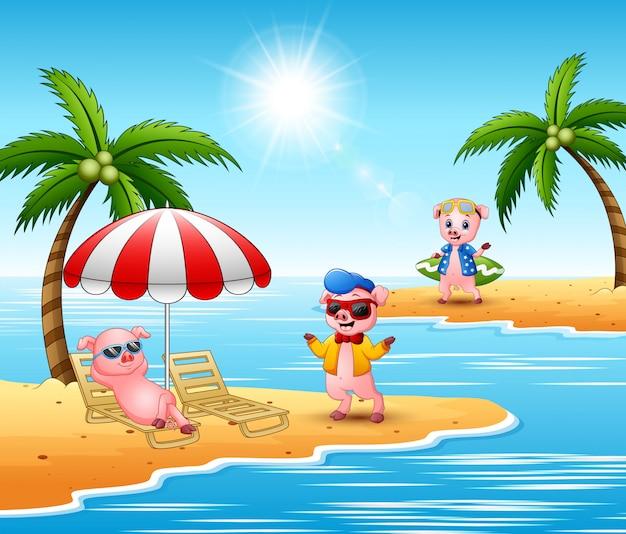 Des cochons en dessin animé profitent des vacances d'été sur la plage Vecteur Premium