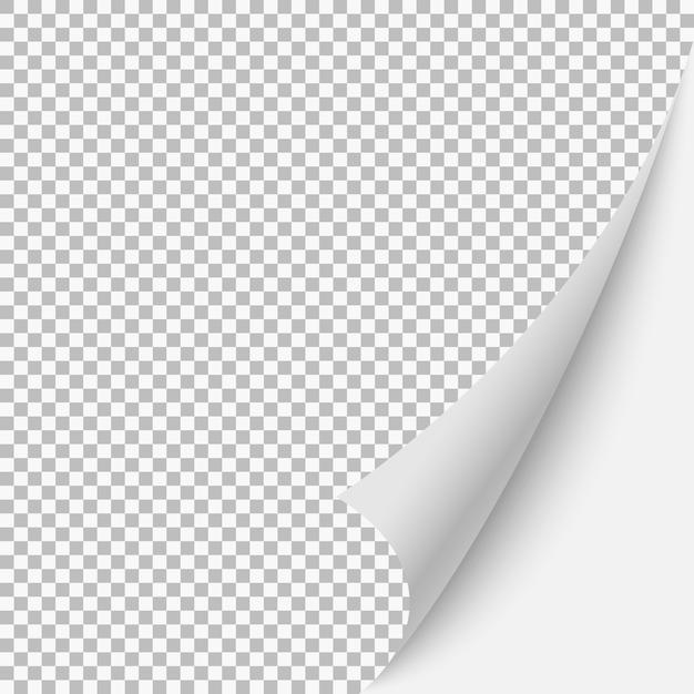 Coin blanc de la page blanche de papier avec une ombre. illustration de modèle de vecteur pour votre conception Vecteur Premium
