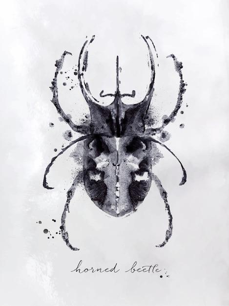 Coléoptère Monotype Hornet Dessin En Noir Et Blanc Sur Fond