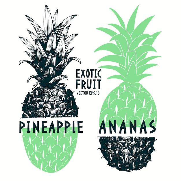 Collage ananas dessiné à la main Vecteur Premium