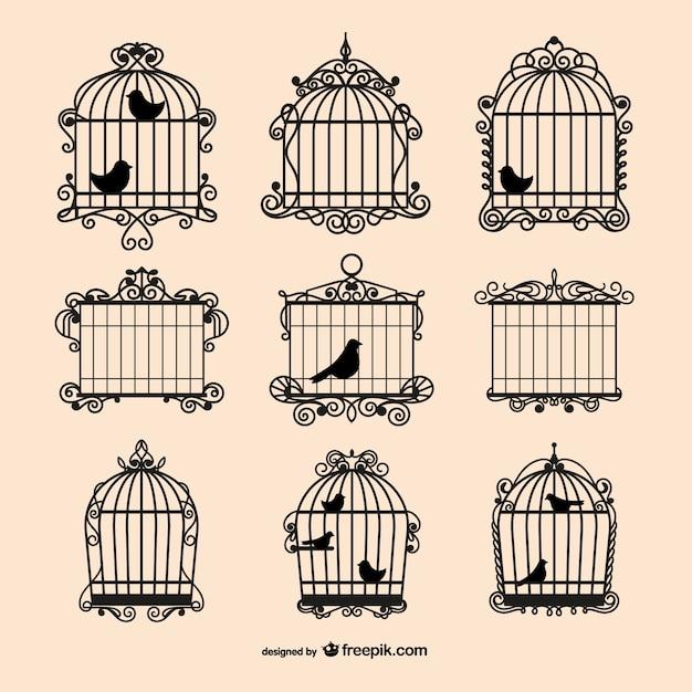 Collecte Des Cages à Oiseaux Vintage Vecteur gratuit