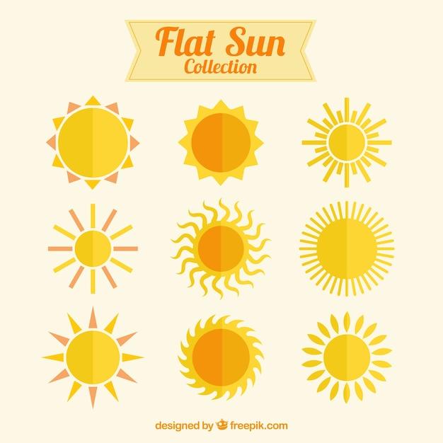 La Collecte Des Soleils Plats Vecteur gratuit
