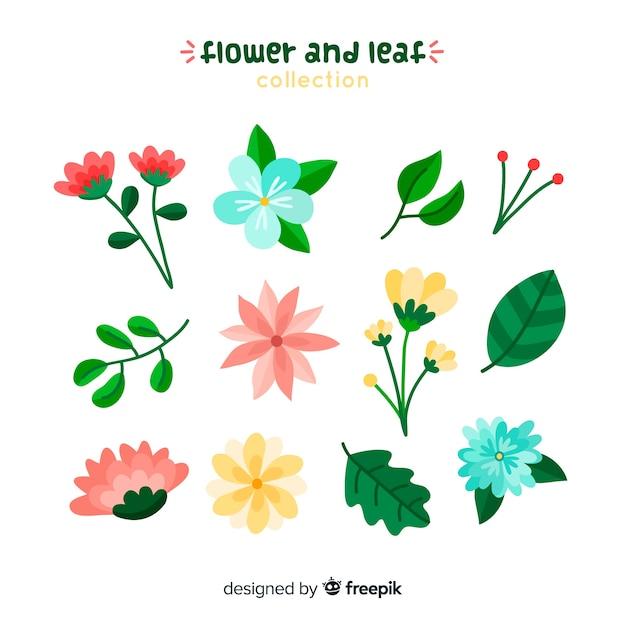 Collectio fleurs et feuilles Vecteur gratuit