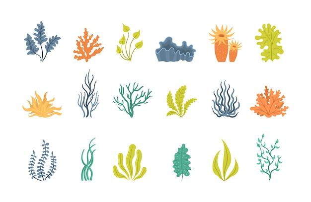 Collection D'algues, De Plantes Marines Sous-marines, De Coquillages. D'algues, De Plantations, D'algues Marines Et De Silhouettes De Coraux Océaniques. Collection D'algues De Dessin Animé. Vecteur Premium