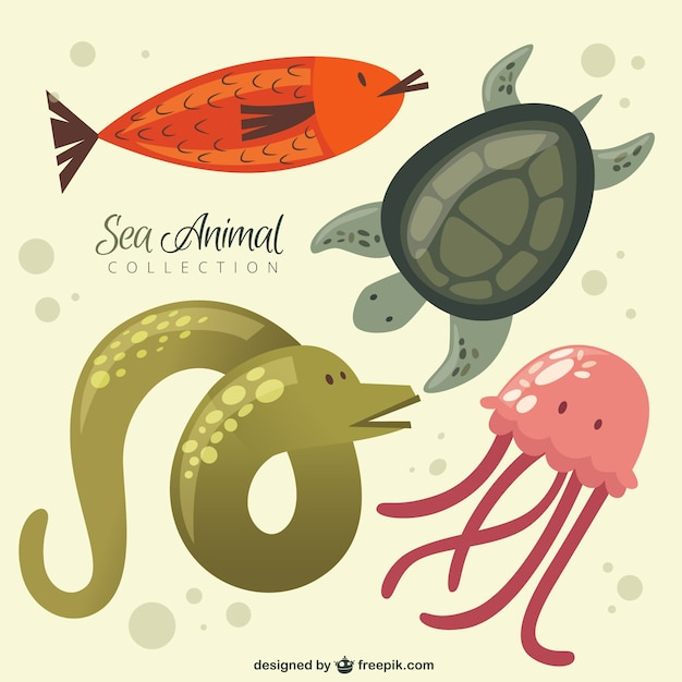 Collection Animale Belle De La Mer Vecteur gratuit