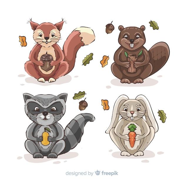 Collection d'animaux automne dessinés à la main Vecteur gratuit