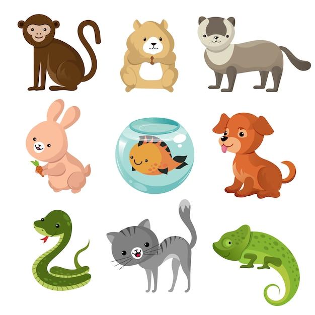 Collection d'animaux domestiques mignons Vecteur Premium