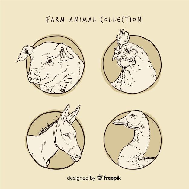 Collection d'animaux de ferme dans un style dessiné à la main Vecteur gratuit