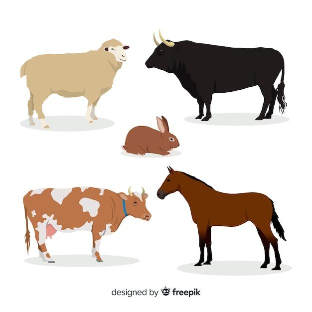 Collection D'animaux De Ferme Dans Un Style Plat Vecteur gratuit