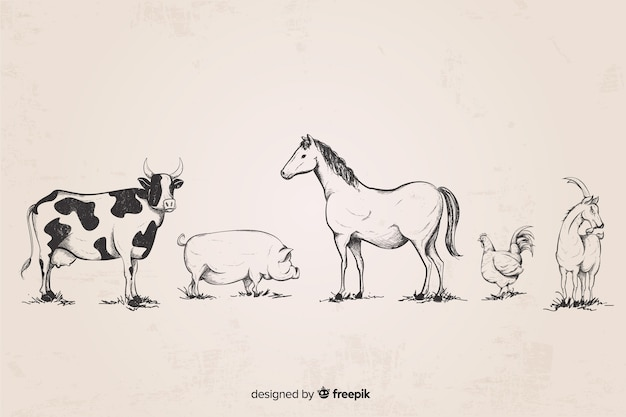 Collection d'animaux de ferme dessinés à la main Vecteur gratuit