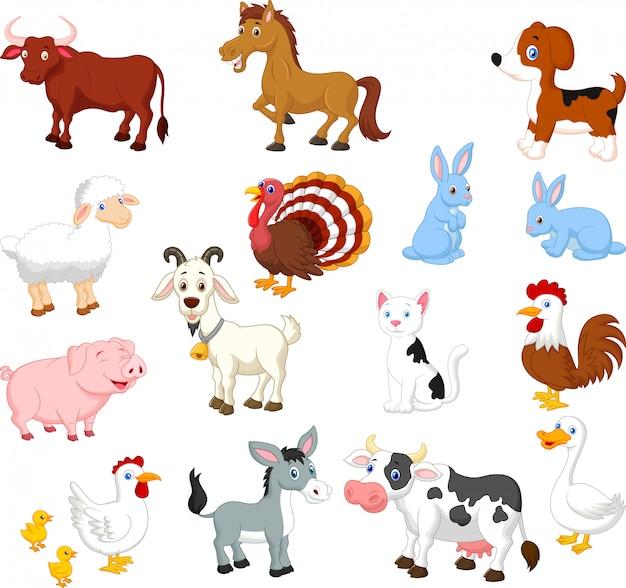 Collection d'animaux de ferme sur fond blanc Vecteur Premium