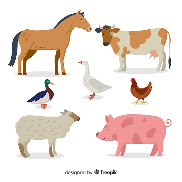 Collection d'animaux de ferme Vecteur gratuit