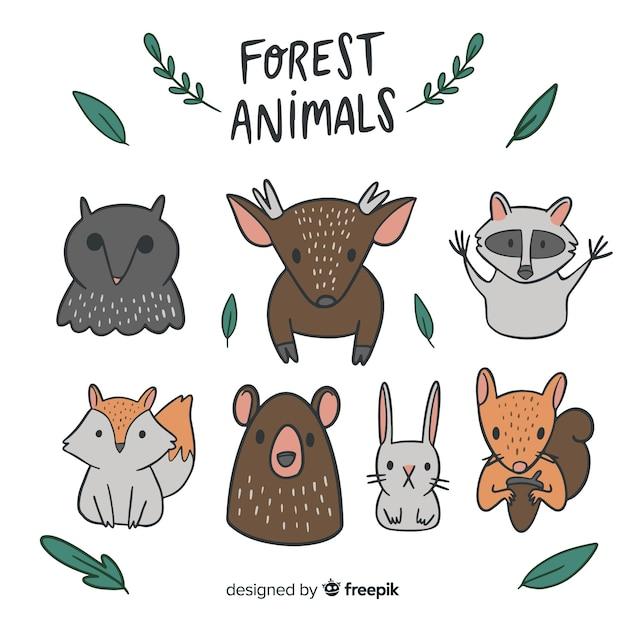 Collection d'animaux forestiers Vecteur gratuit