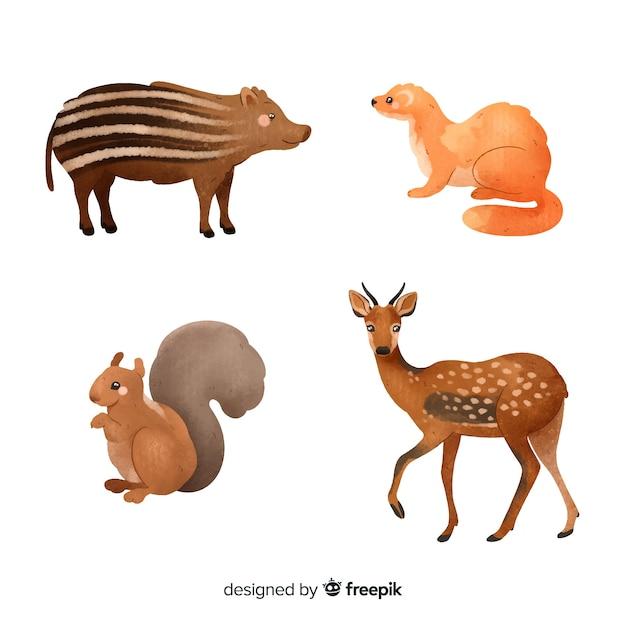 Collection d'animaux de la forêt à l'aquarelle Vecteur gratuit