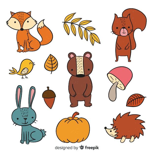 Collection d'animaux de la forêt mignons dessinés à la main Vecteur gratuit