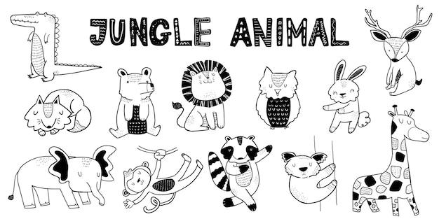 Collection D'animaux De La Jungle Vecteur Premium